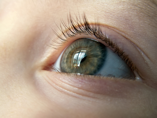 Close up of child's green eye